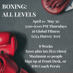 Boxing All Levels